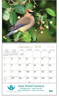 Backyard Birds 2021 Calendar