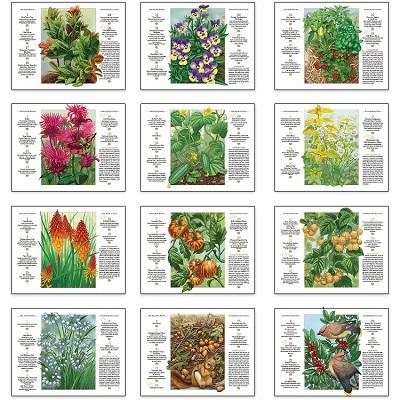 Old Farmers Almanac Gardening 2021 Calendar Monthly Scenes